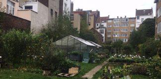 Photo-dun-jardin-et-potager